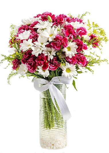 KARANFİL  RÜZGARI -  ıspartada çiçekçi