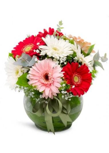 GERBERA CÜMBÜŞÜ - ısparta çiçekçi