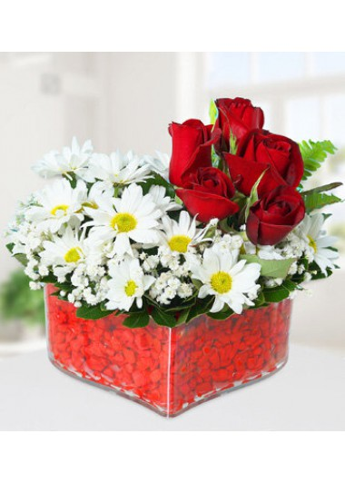 KALPTE KIRMIZI GÜL ve PAPATYALAR - ısparta çiçek siparişi